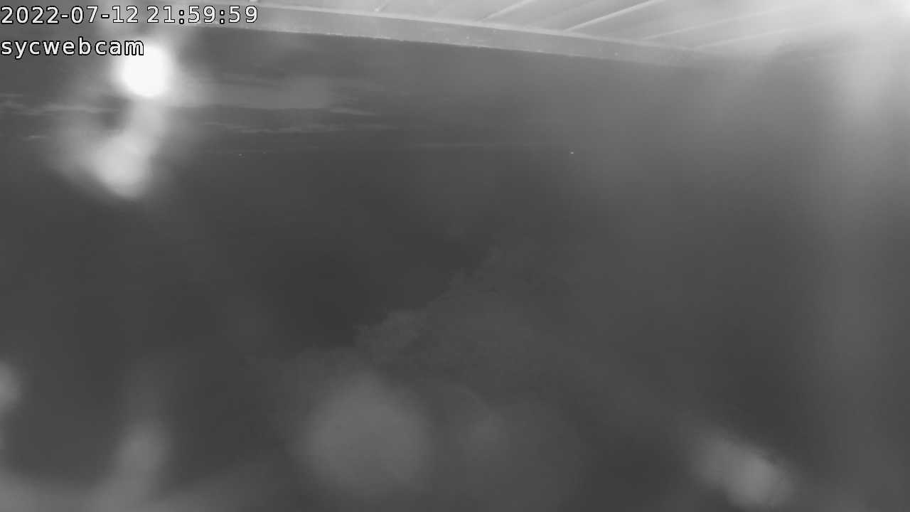 The SYC webcam has been pointed at the north shoreline to monitor the erosion.